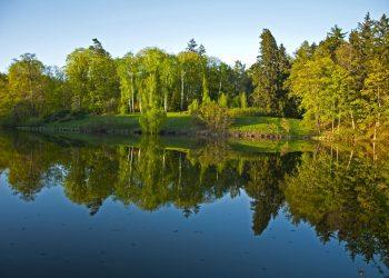 Дендропарк Тростянец, вид на озеро.
