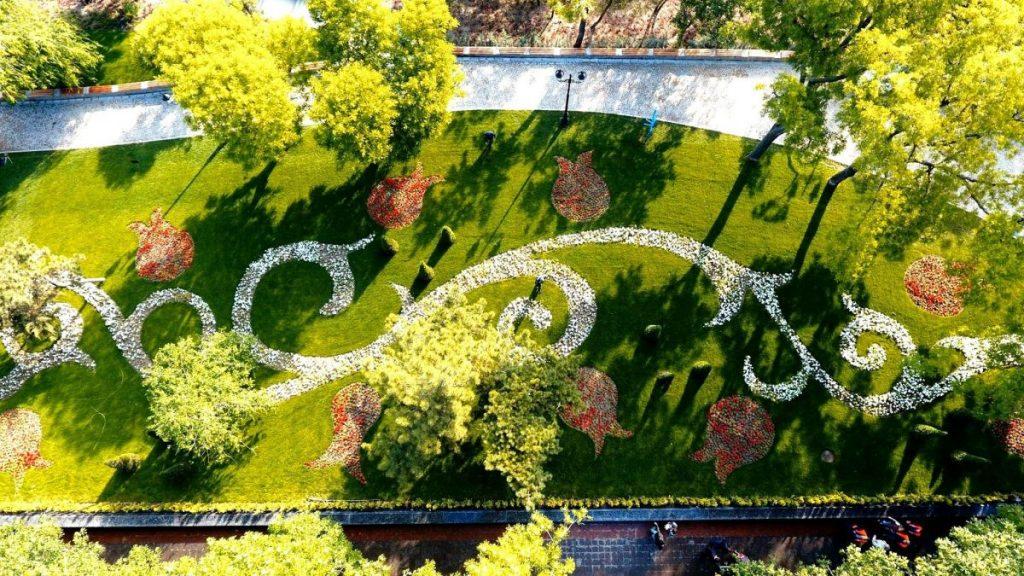Посреди стамбульского парка в Одессе спряталась незаметная флористическая композиция.