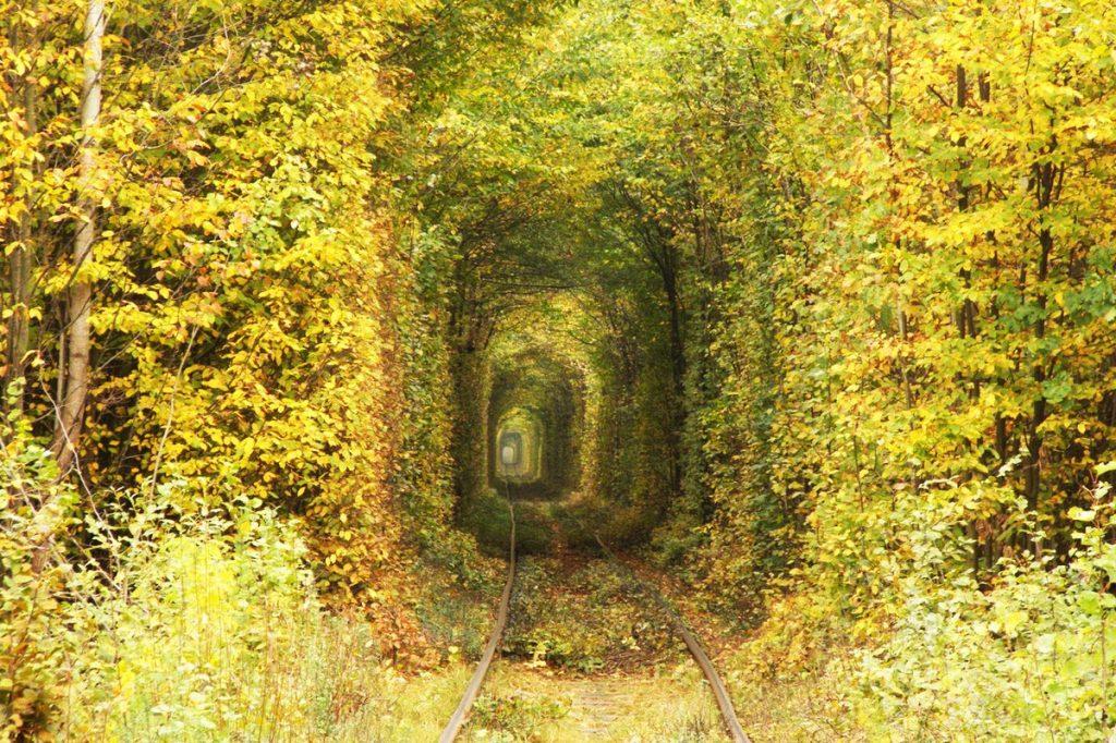 Туннель влюбленных осенью