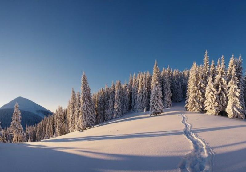 Заснеженные горы впечатляют в любом возрасте