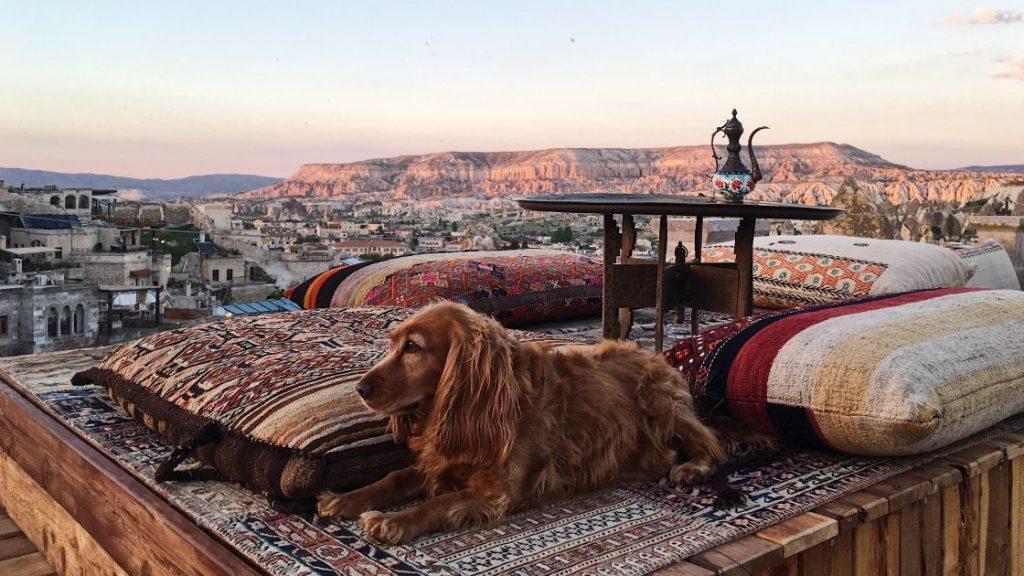 Панорамний вид з тераси одного з кращих готелів Каппадокії – Sultan Cave Suites