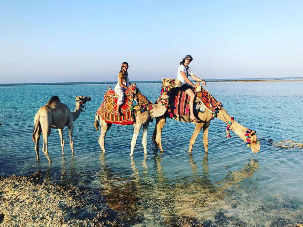 Прогулянка на верблюдах на відпочинку в Єгипті