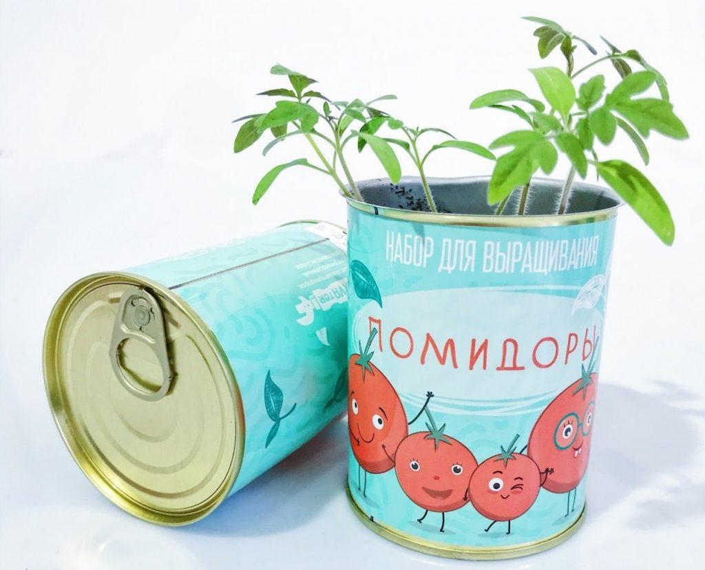 Консерва-растение