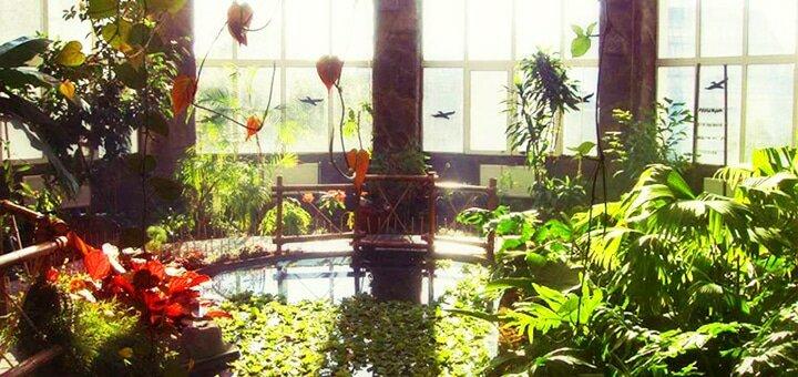 Виставка рослин «Едемський сад»