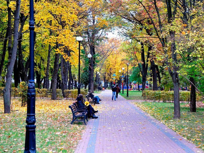 Парк им. Пушкина