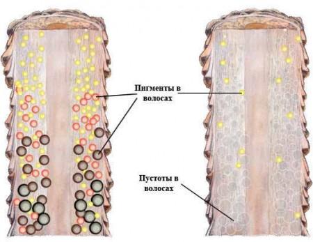 Процесс обесцвечивания волос под действием пудры