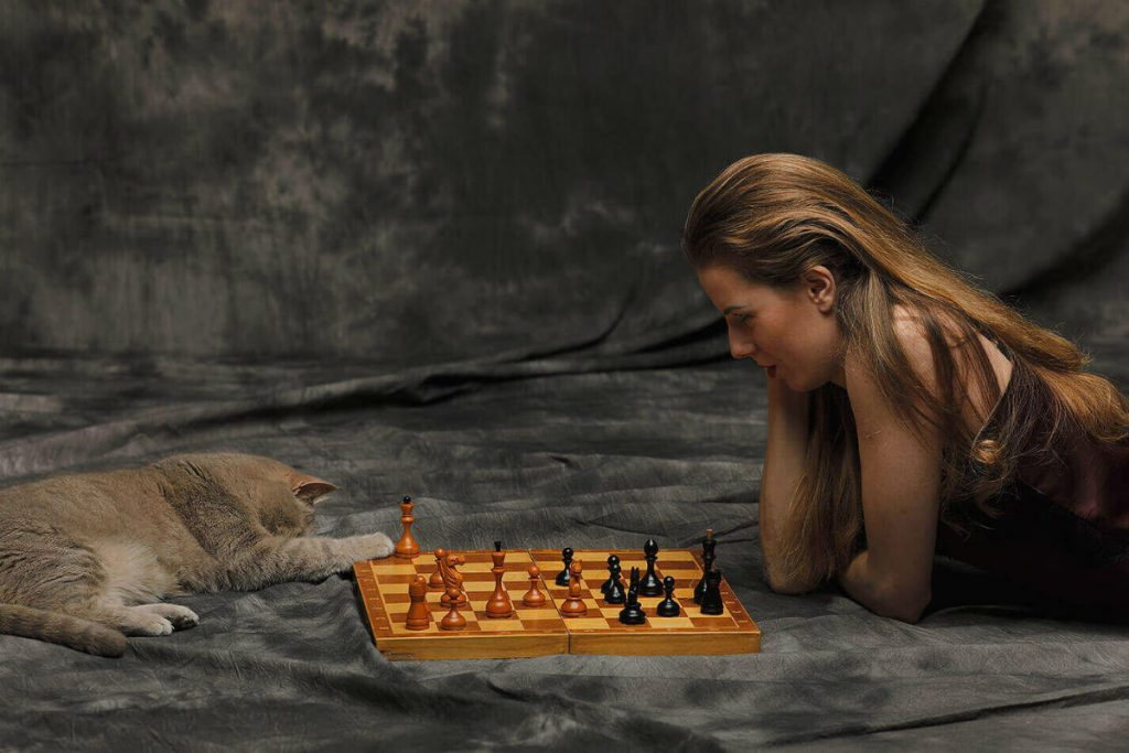 В настолки можно играть одному или найти компанию, чтоб не было скучно