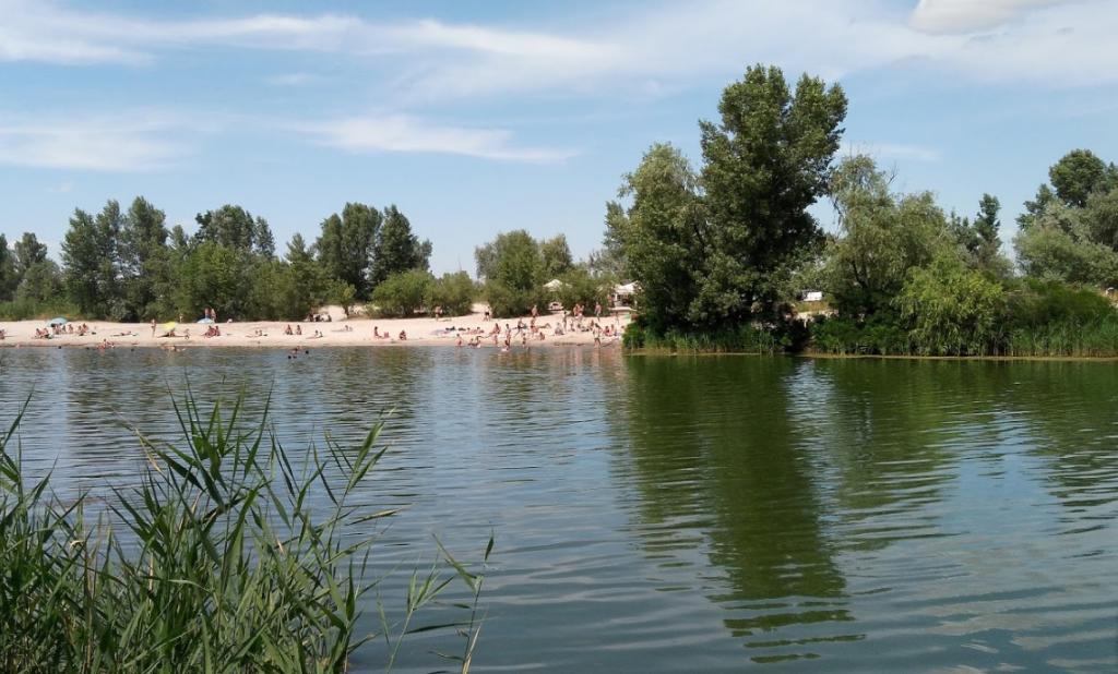 Зелена лагуна посреди мегаполиса: ТОП-5 мест для пикника в Днепре