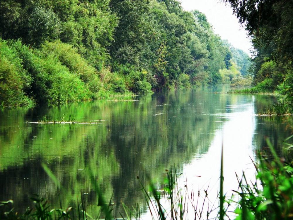 Дніпровсько-Орільський заповідник