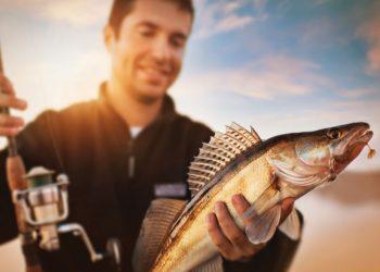 Где порыбачить в Днепре