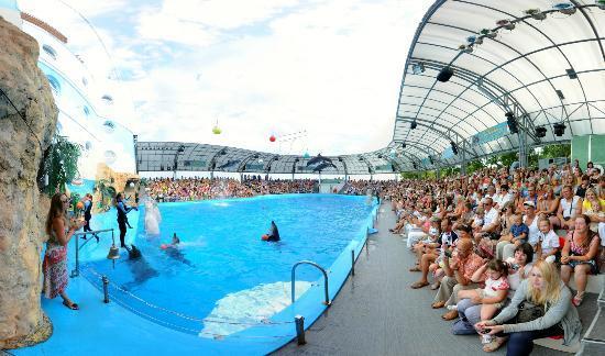 Дельфинарий «Немо» в Одессе