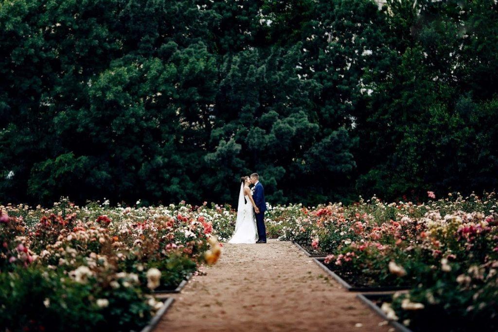 весільна фотосесія у ботсаду
