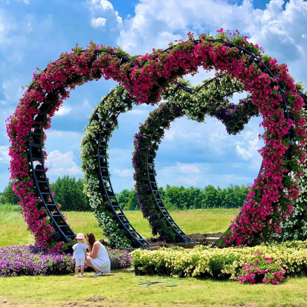 цветочные арки в добропарке
