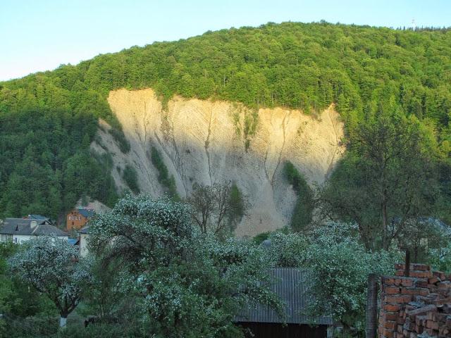 Лысые островки скалы визуально похожи на изображение слона