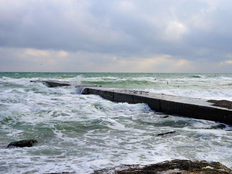Море Одеси в листопаді