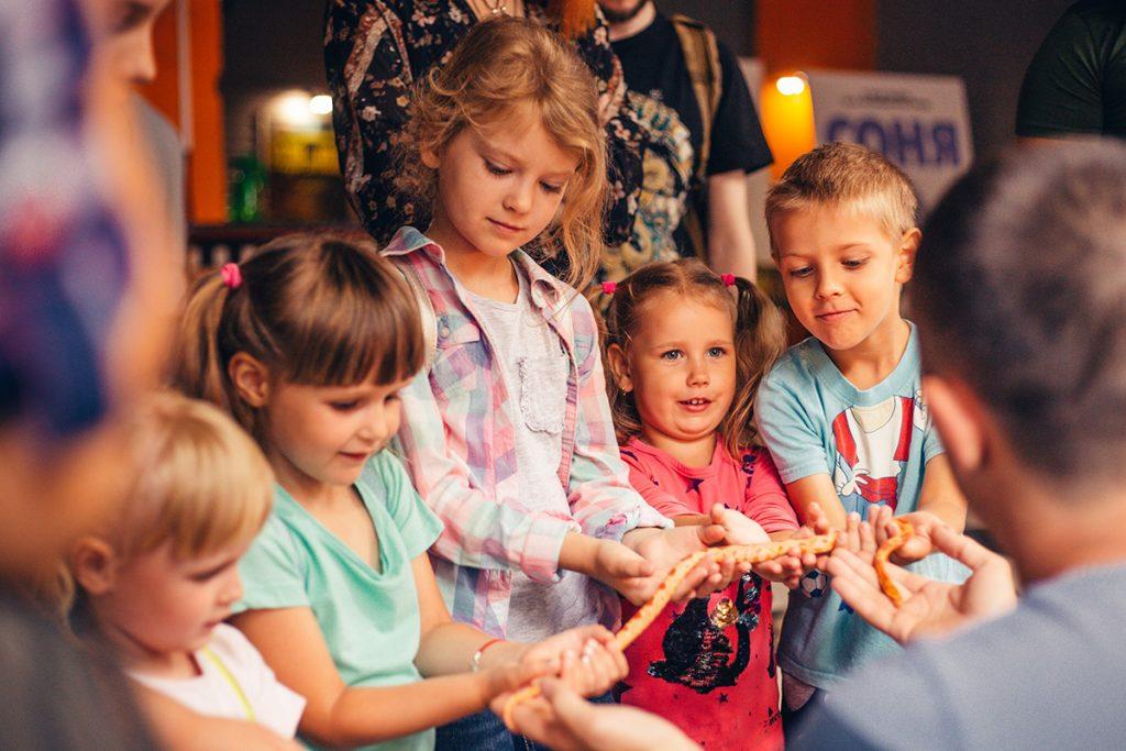 Сходить на выставку добрых змей – как идея чем заняться на каникулах