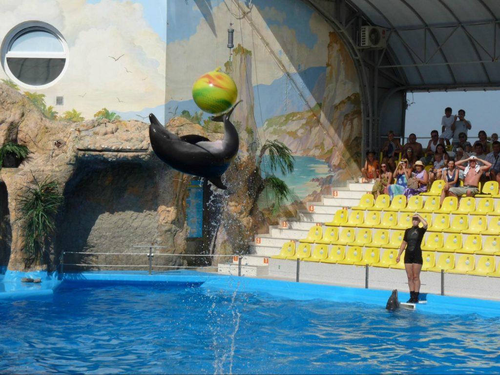 Дельфінарій «Немо» в Одесі