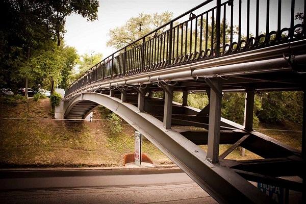 Зоологический мост