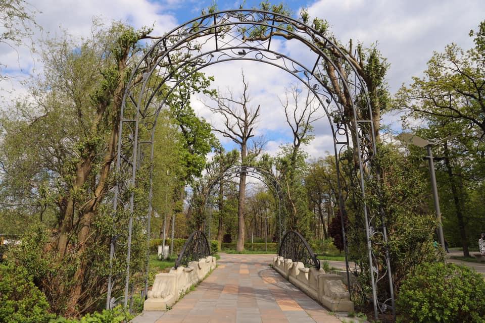 Зелена арка в Бучацькому парку