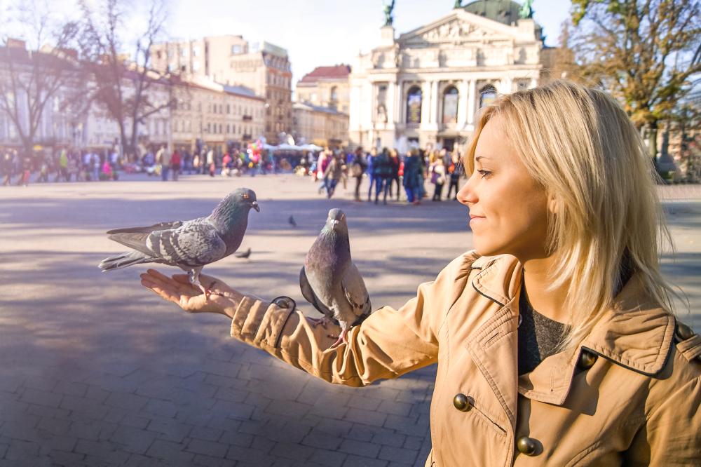 Фото з місцевими птахами – звичайними міськими голубами :)