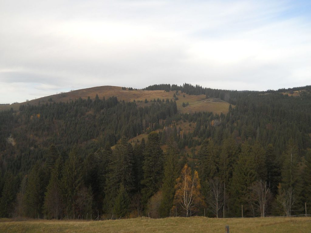 Вид на перевал Шурдин