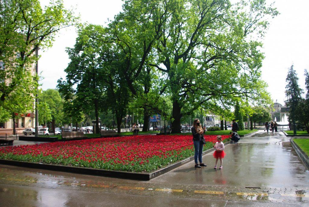 Парк Шевченка особливо гарний навесні