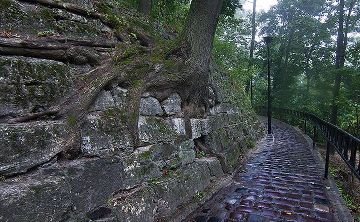 Якщо довго гуляти територією парку «Високий замок», можна знайти безліч цікавих локацій для фотографії