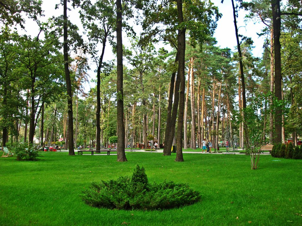 Парк в Ірпені – відмінне місце для виїзної фотосесії