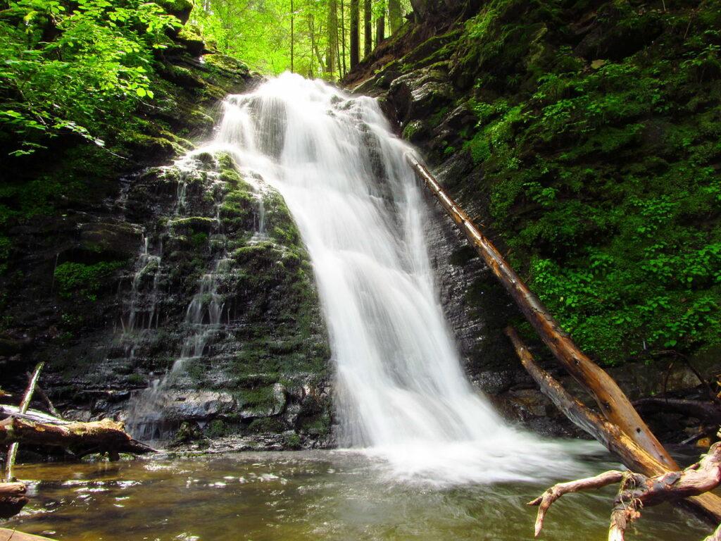 Відпочиваючи в Трускавці, не пропустіть можливість відвідати чудо природи